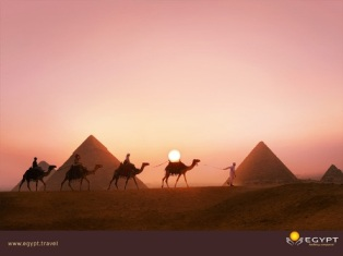 Egypt Pyramids and Camel